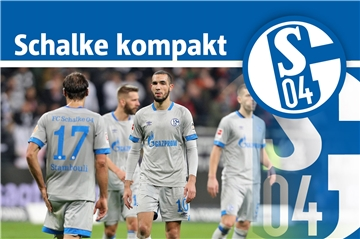 20. November: Heute eine Trainingseinheit in Gelsenkirchen